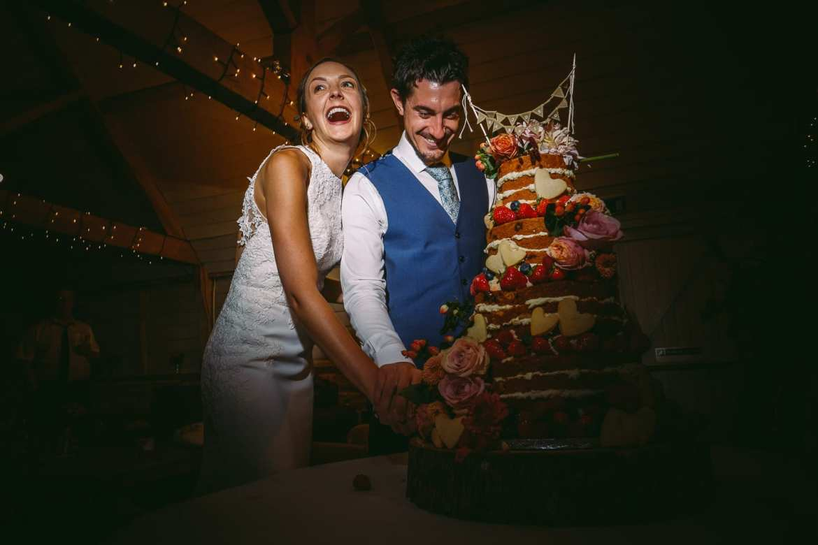 The newlyweds cut the cake