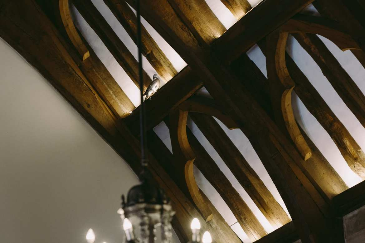 A pigeon in the rafters of the great hall
