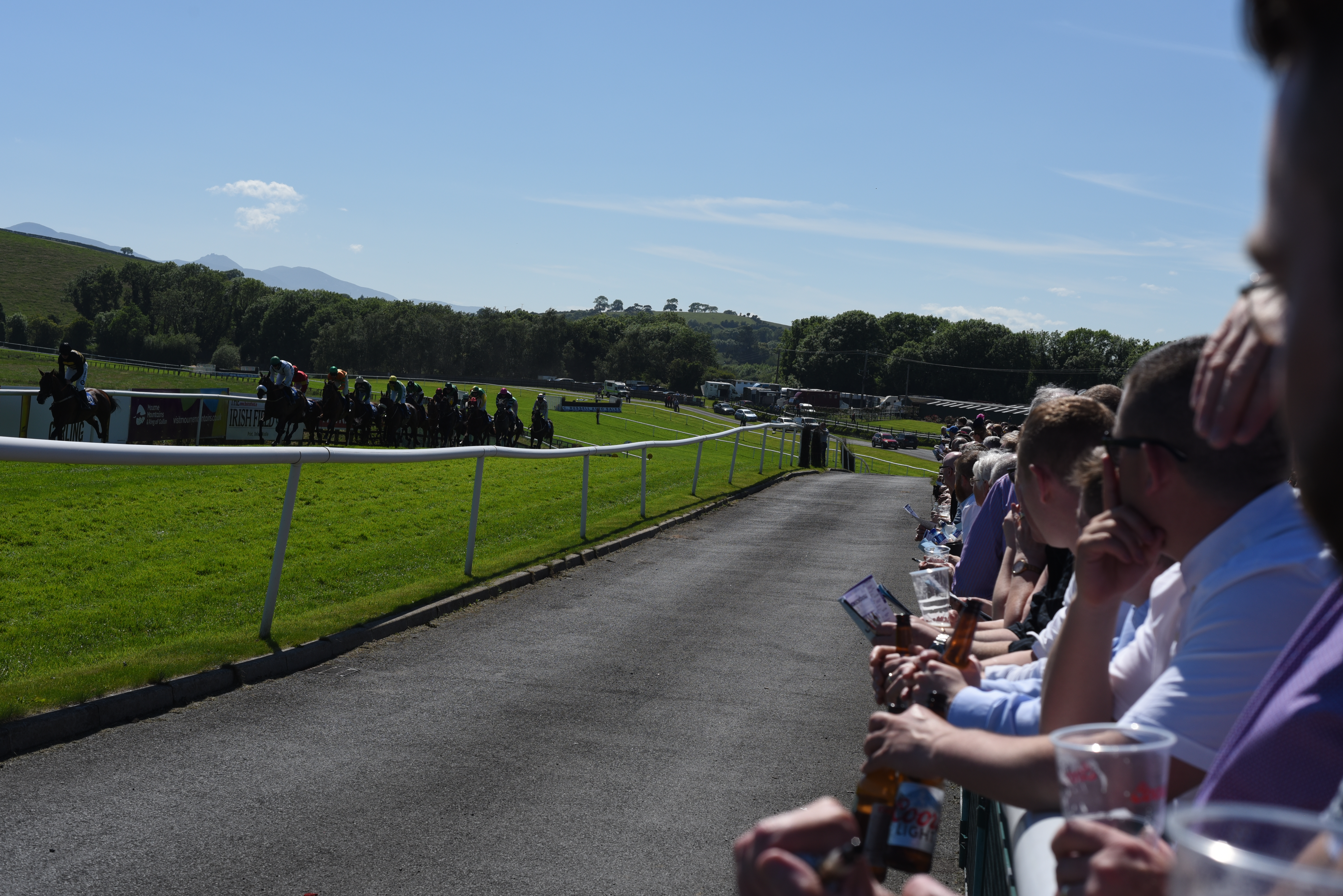 Horses and punters on Raceday.