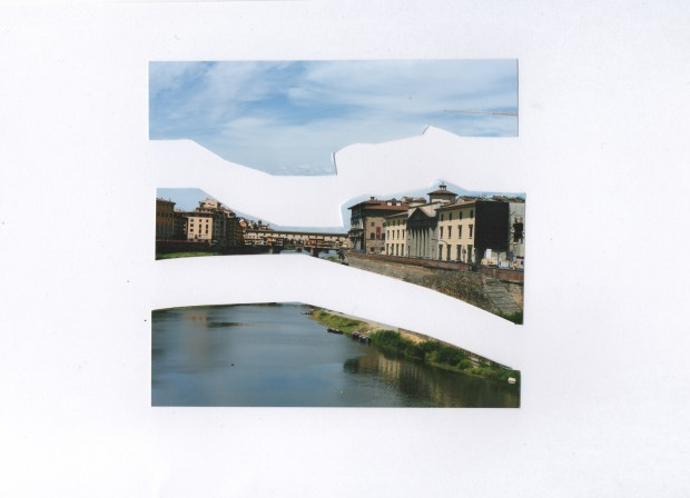 Photographic cut-out, after Matisse: Arno_3.1.