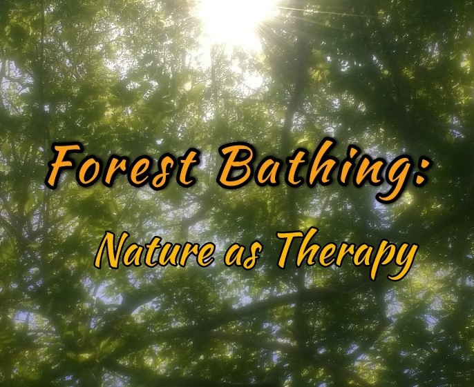forest bathing: nature as therapy picture