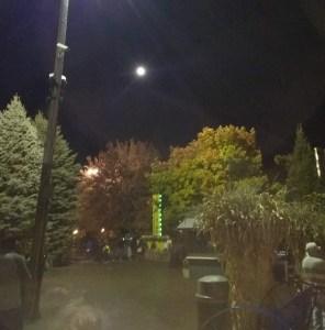fall festival recreation photo
