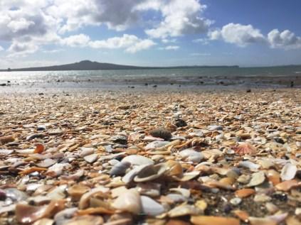 akl mission bay rangi island shells logo -#YesterdayInAuckland  #Auckland- one Mid Late August Wintery Mission Bay – Rangitoto Island- A Gallery- Photographer @KevinJamesNg