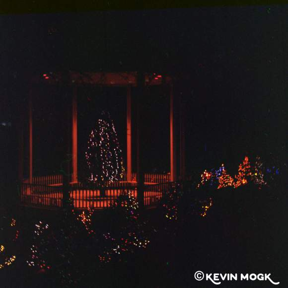Christmas trees lit up in Lunenburg image 02