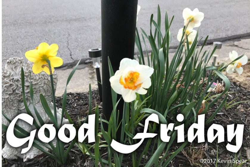 "Daffodils around a mailbox with the caption, ""Good Friday"""