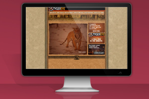 Flash Website – TygerEye -2005 – Website Closed