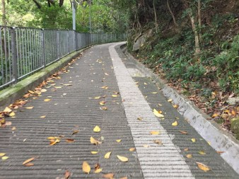 Wan Chai Gap Road up to Bowen Road trail