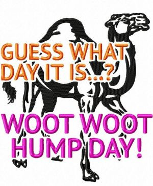 Funny Camel Hump Day Embroidery Design