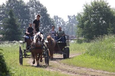 Voore Tintin 869E (2014) Hobuste sõidu- ja veokatsed, Tori, Pärnumaa - eesti tõugu noorhobuste 2-võistlus