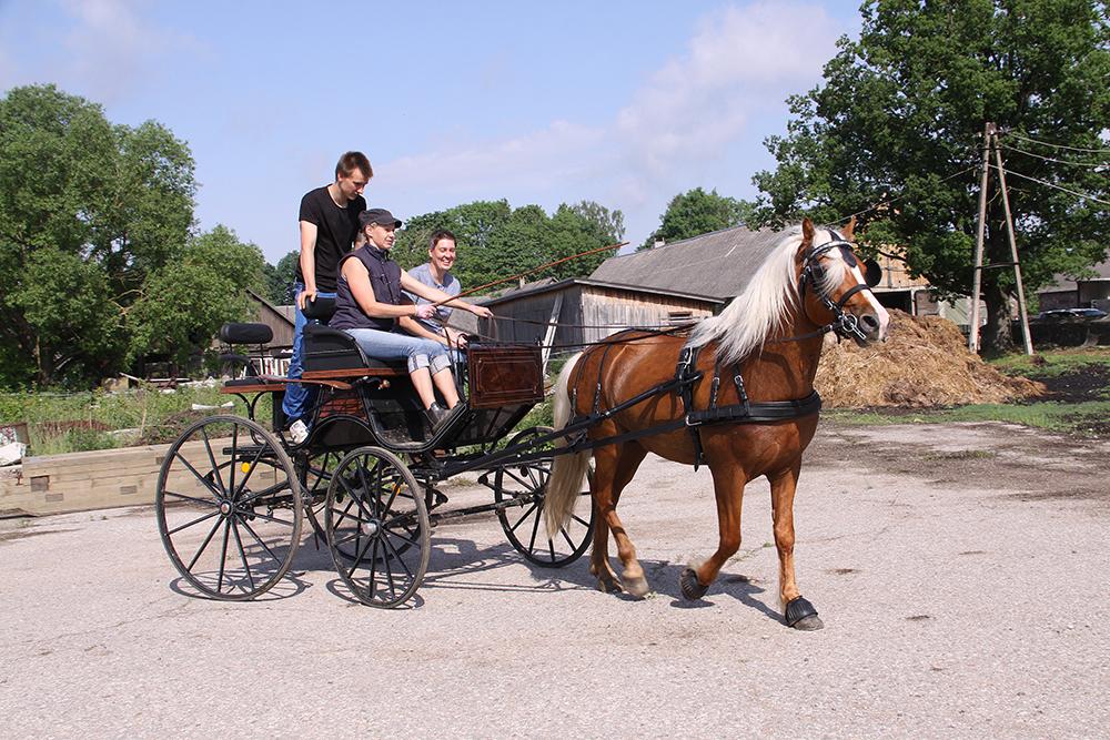 Hobuse turvalise transportimise ABC