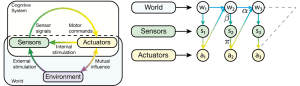 Sensorimotor Loop for Reactive Systems
