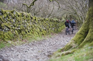 Grizedale_grizzly_adventurex_ride