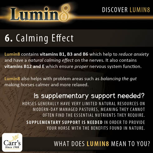Lumin8 The Natural Conditioning Supplement Promotion