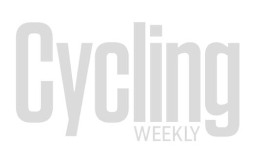 specialized bikes 2019