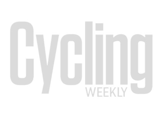 TernVektron D8 electric folding bike
