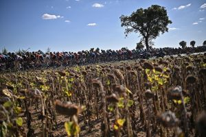 Two people held by French authorities in Tour de France doping investigation