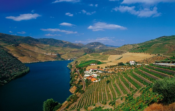 Be a wine tourist in the Douro Valley - The Field