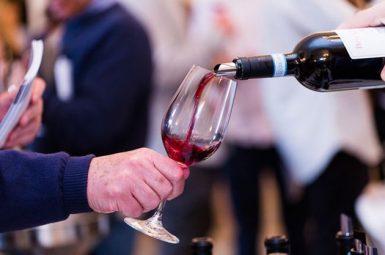 Invest into Wine, Sure Holdings, Non Stop Wine Machine, Good Returns, Fine Wine Investment