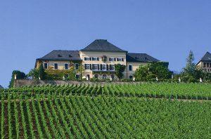 German wine quiz