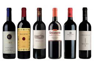 Bolgheri 2016 vintage report and top wines