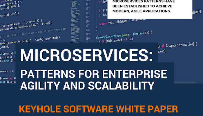 Microservices White Paper | Keyhole Software