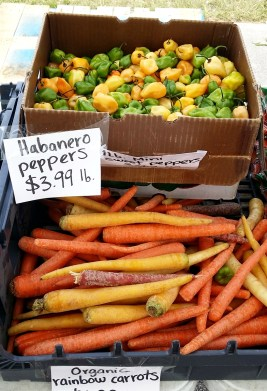 Daytona Beach farmers market vegetable