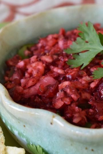 holiday cranberry salsa