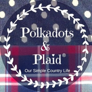 Polkadots & Plaid Square Logo