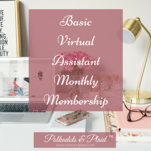 Basic Virtual Assistant - Monthly Membership