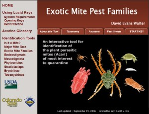 Invasive Mite Identification: Tools for Quarantine and Plant Protection - Exotic Mite Pest Families