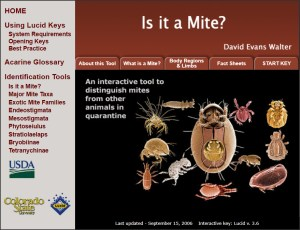 Invasive Mite Identification: Tools for Quarantine and Plant Protection - Is it a Mite?
