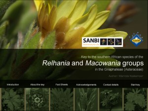 Relhania and Macowania groups home page