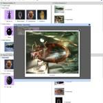 Key to Families of Adult Australian Aquatic Coleoptera (Beetles) Lucid key taxon image gallery example