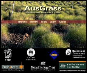 AusGrass: Grasses of Australia home page