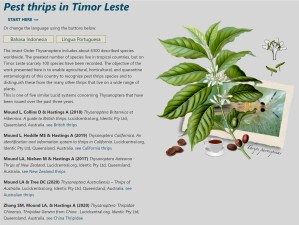 Thrips of Timor Leste home page