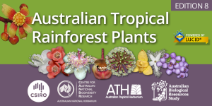 Australian Tropical Rainforest Plants mini screen