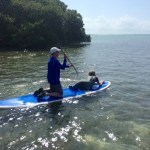 father daughter paddleboarding