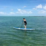 Paddle board Keys Boat Tours mangrove tour
