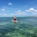 SUP Keys Boat Tours mangrove tour