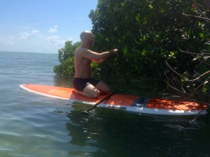 SUP mangroves