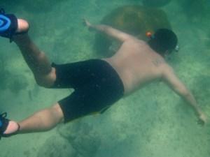 snorkeling Newfound Harbor