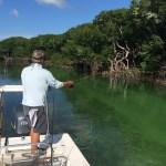 fishing backcountry Keys Boat Tours