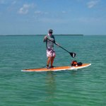 power paddle SUP
