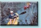 Kayaking a mangrove creek in the  Florida Keys