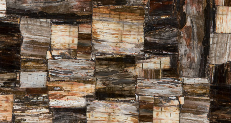 Petrified Wood Classic 8331