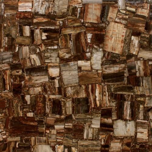 Retro Petrified Wood 1