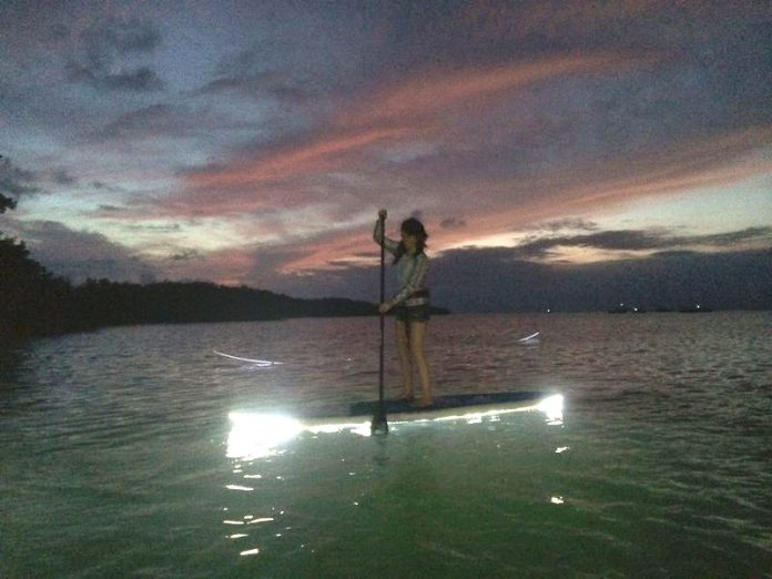 #LetYourLightShine: Take a night tour on a light-up paddleboard - A man standing next to a body of water - Water resources