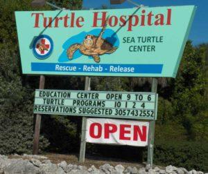 I wonder if this is where the Teenage Mutant Ninja Turtles go?