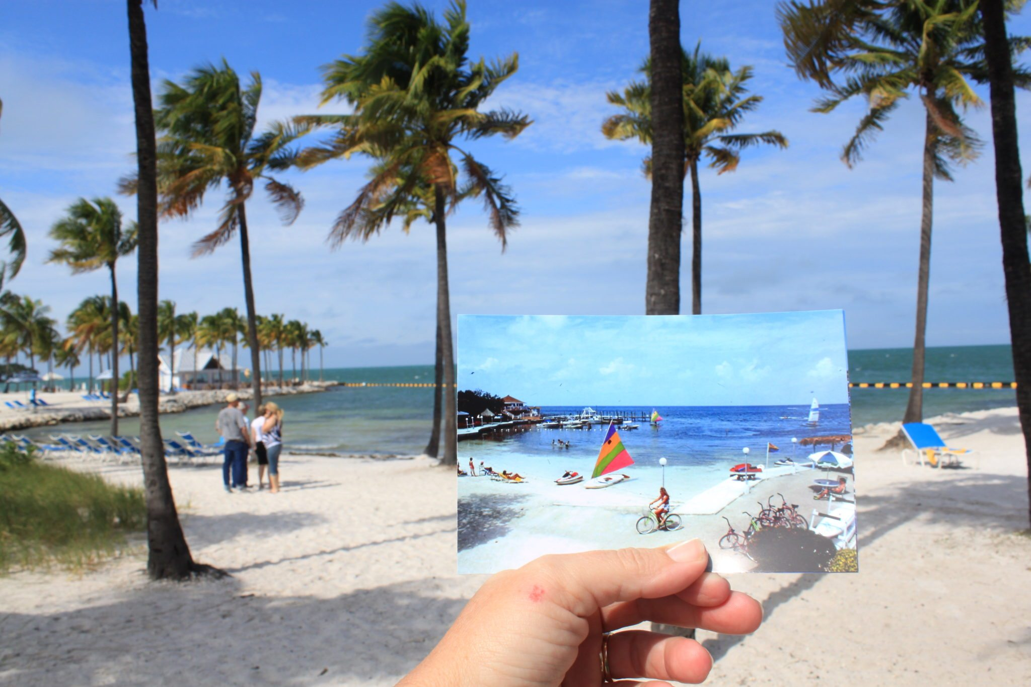 This is a before and after look at the gulfside of Marathon. What was once Buccaneer Resort, one of Marathon's first luxury hotels, is now Tranquility Bay.