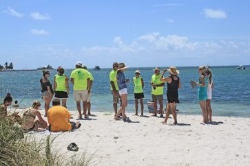 The dragon boat paddlers from Amelia Island discuss strategy on Sombrero Beach.